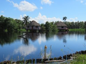 Séjour inoubliable à Cuba : les inratables