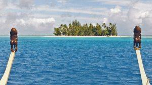 Top 4 des meilleurs spots de plongées sous-marines en Polynésie française