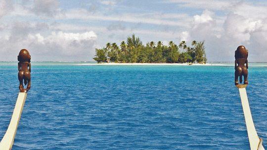 Top4 des meilleurs spots de plongées sous-marines en Polynésie française