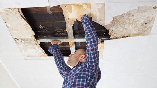 Assurance : Fuite d'eau dans un mur
